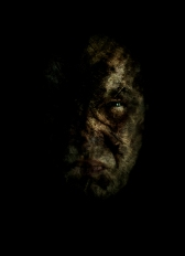 Poznanie zła / Experience of evil